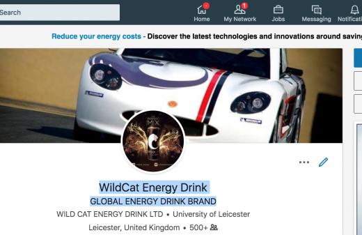 WILDCAT ENERGY DRINK LINKEDIN